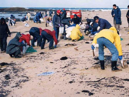 早速、始められた鳴り砂を守る会会員の回収作業