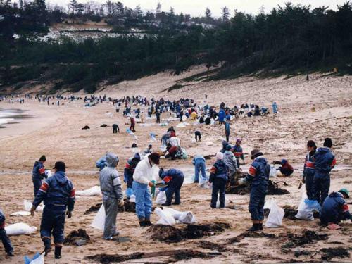 (2月2日)多くのボランティアの人々