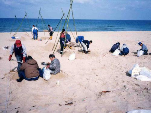 竹で三脚を組んで砂をふるう人たち