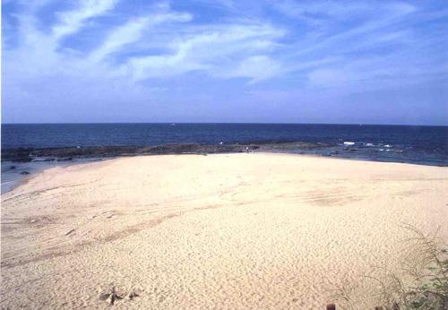 太鼓浜と大岩