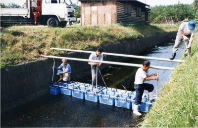 河川水質浄化の取組