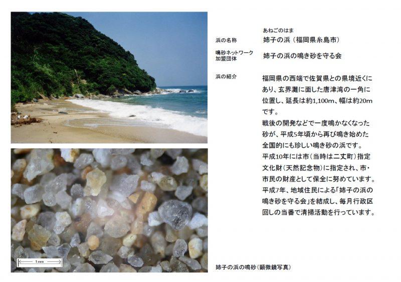 15.姉子の浜