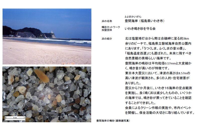 9.豊間海岸